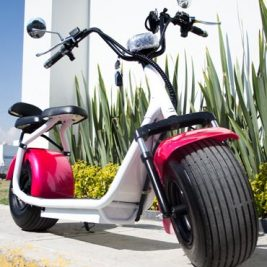 Vehículo Eléctrico Ekoo Style